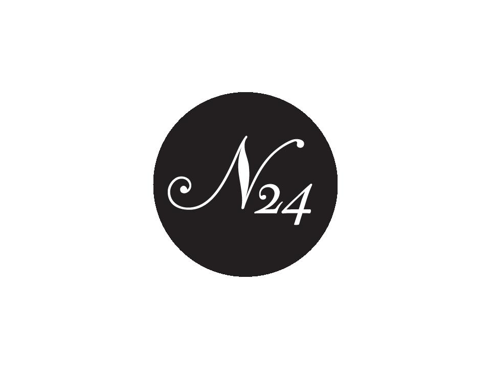 N24 logotype